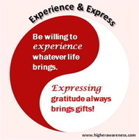 experience consciousness